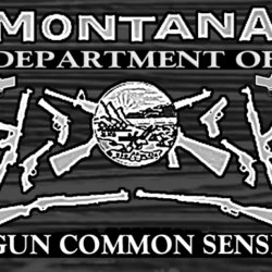 Department of Gun Common Sense avatar